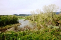 elk-river
