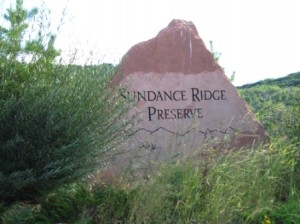 Sundance Ridge Preserve in Steamboat Springs